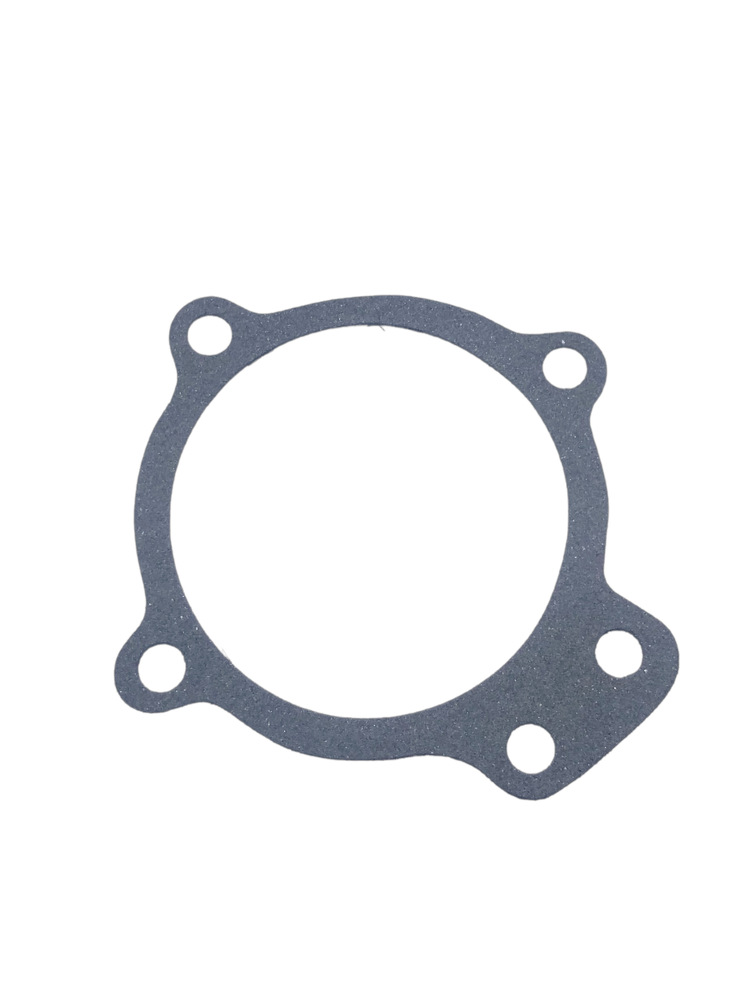 Chevrolet Parts -  Water Pump Gasket (Short Shaft Conv.)
