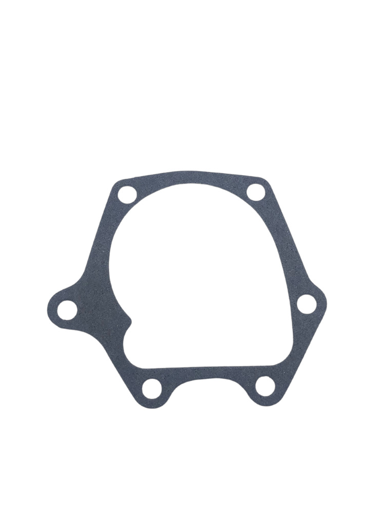 Chevrolet Parts -  Water Pump Gasket -To Rear Cover Plate