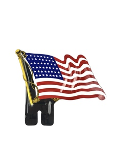 License Plate Topper- 48 Star Flag Photo Main